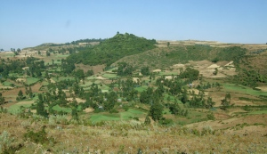 A patchwork of fields in Amhara region, Ethiopia